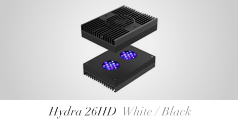 【HYDRA】Hydra 26HD Black/White【AI】