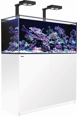 REEFER 250DX ホワイト【Red Sea】